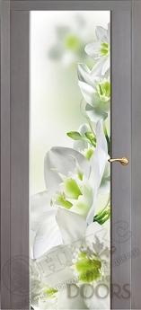 Фотопечать 1 дверь межкомнатная